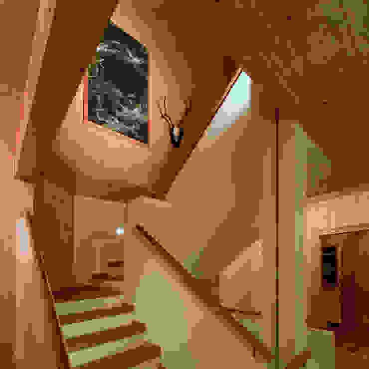 Projekty,  Domy zaprojektowane przez Thoma Holz GmbH, Wiejski
