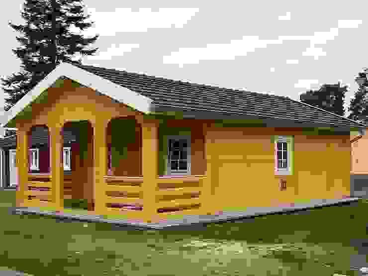 房子 by Betana Blockhaus GmbH, 北歐風