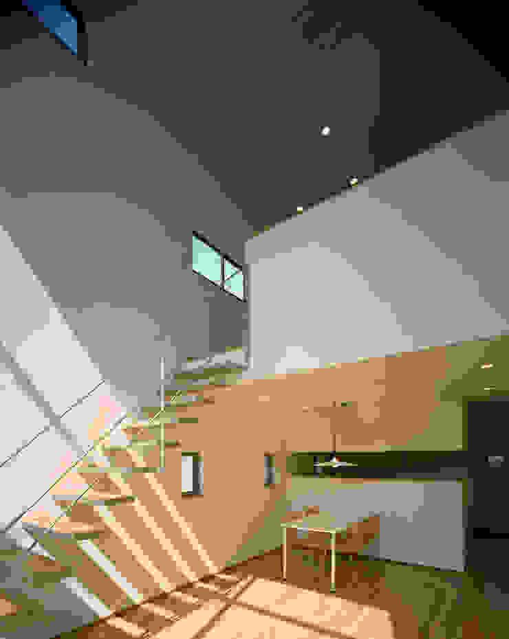 フラッツ5+1 オリジナルスタイルの 玄関&廊下&階段 の 西島正樹/プライム一級建築士事務所 オリジナル