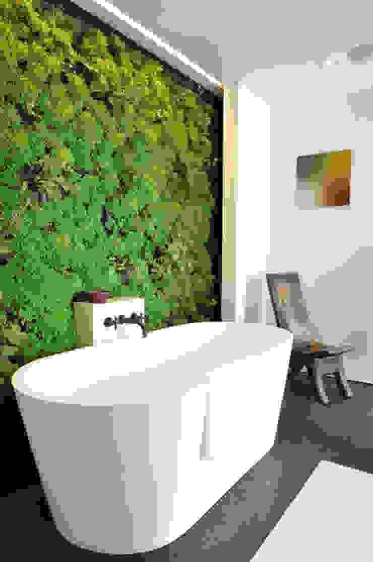 Dotto Francesco consulting Green Casa de banhoDecoração