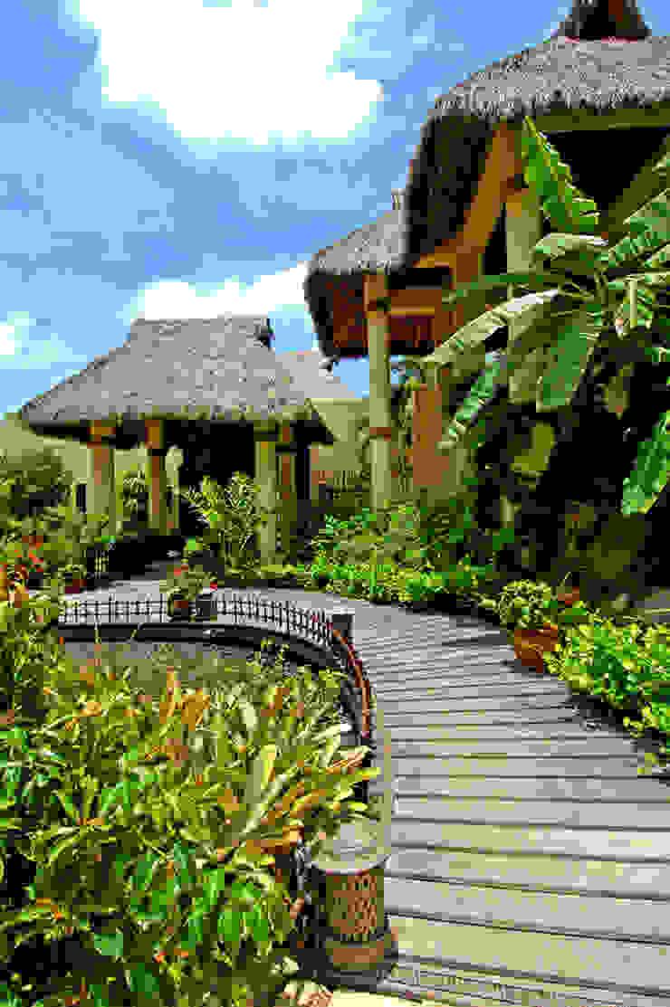 Casa Amore Jardines tropicales de BR ARQUITECTOS Tropical