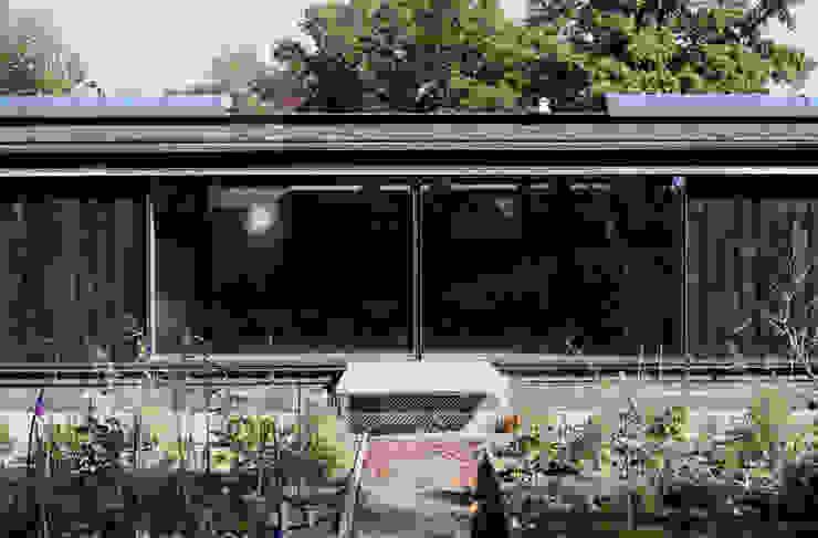 Basing Farm Modern windows & doors by IQ Glass UK Modern