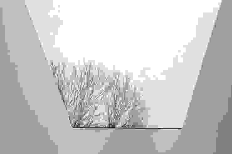 Lysia Street Minimalistische serres van S&Y Architects Minimalistisch