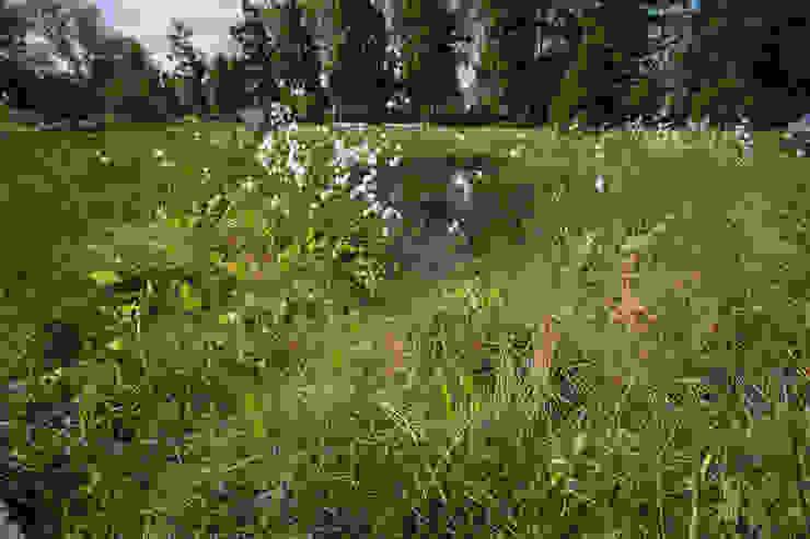 Moorpflanzung Kurgelände GFSL clausen landschaftsarchitekten gruen fuer stadt + leben Ausgefallene Krankenhäuser