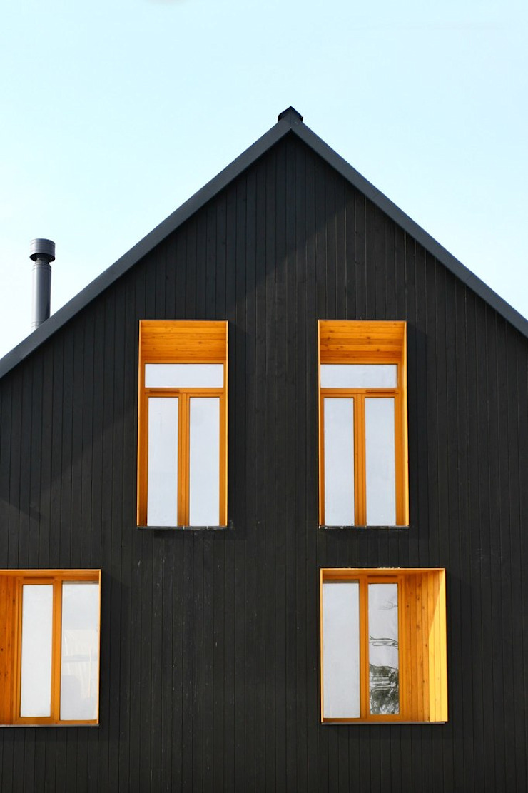 Черный Дом Дома в скандинавском стиле от Snegiri Architects Скандинавский