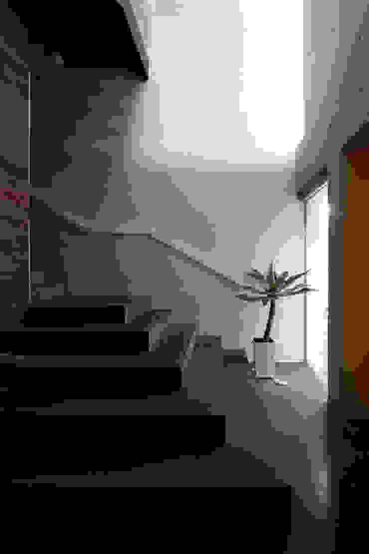 COMpartment モダンスタイルの 玄関&廊下&階段 の エスプレックス ESPREX モダン