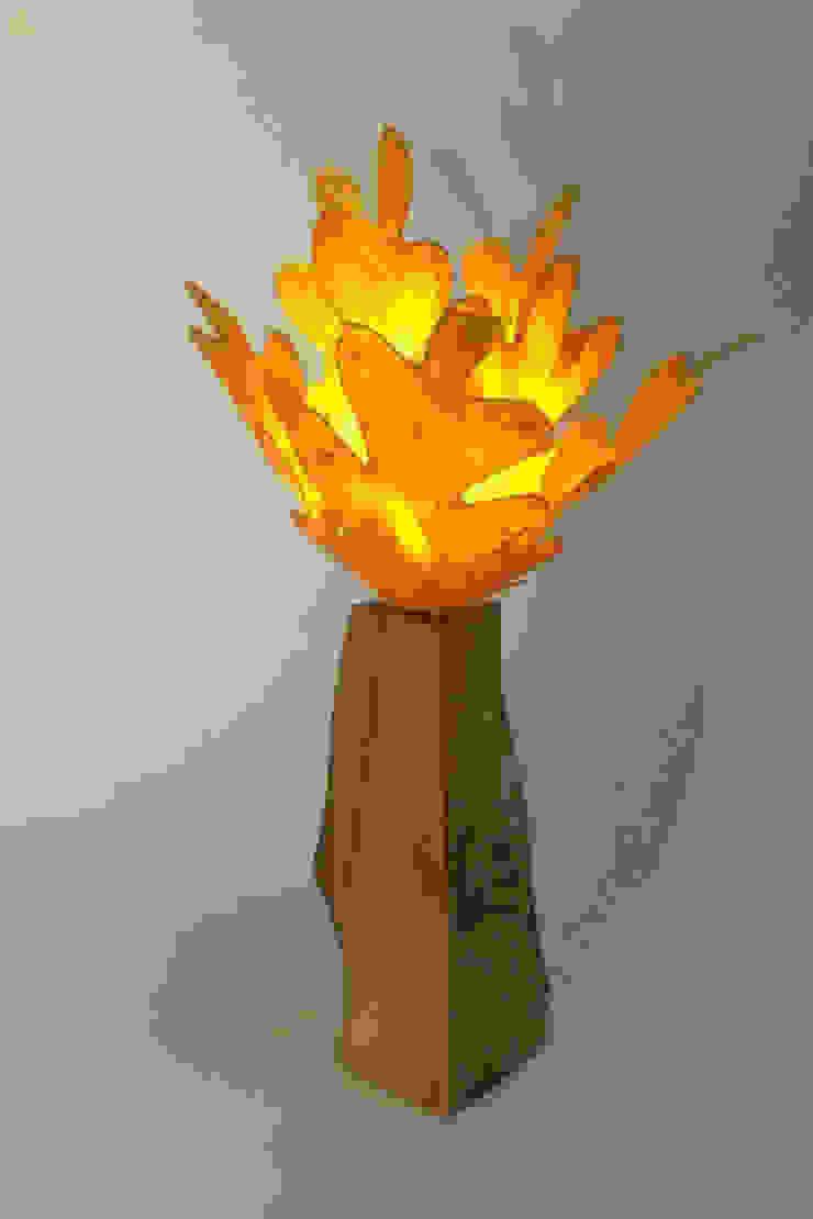 Oak light: modern  by Colin Chetwood, Modern
