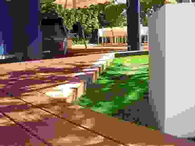 Jardín sin mantenimiento Jardines de estilo moderno de Palos en Danza Moderno