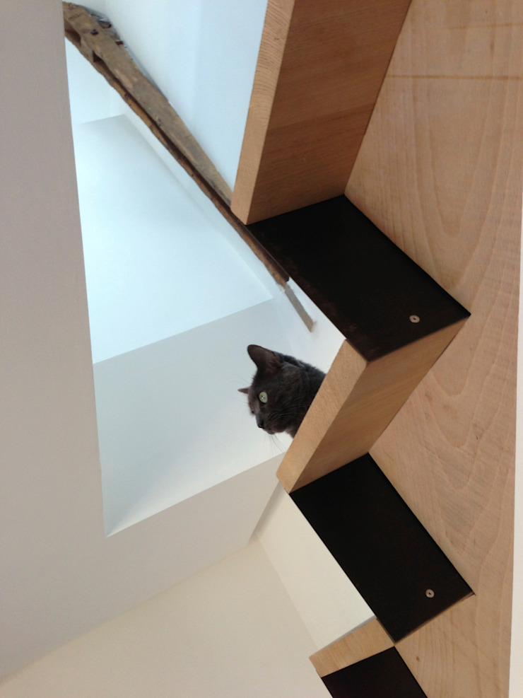 Chat sur escalier par Atelier Tresan Minimaliste