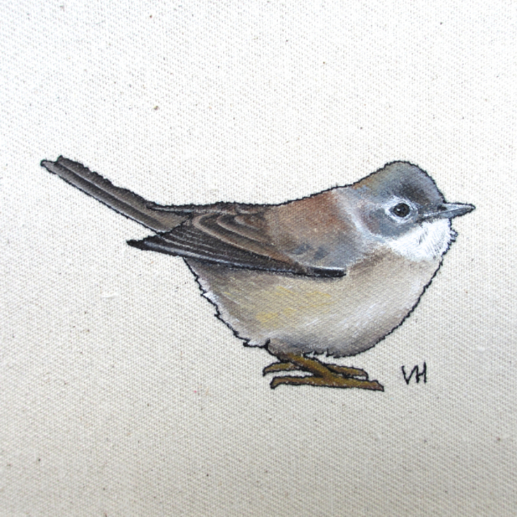 Whitethroat : country  by Lottie's Cottage, Country