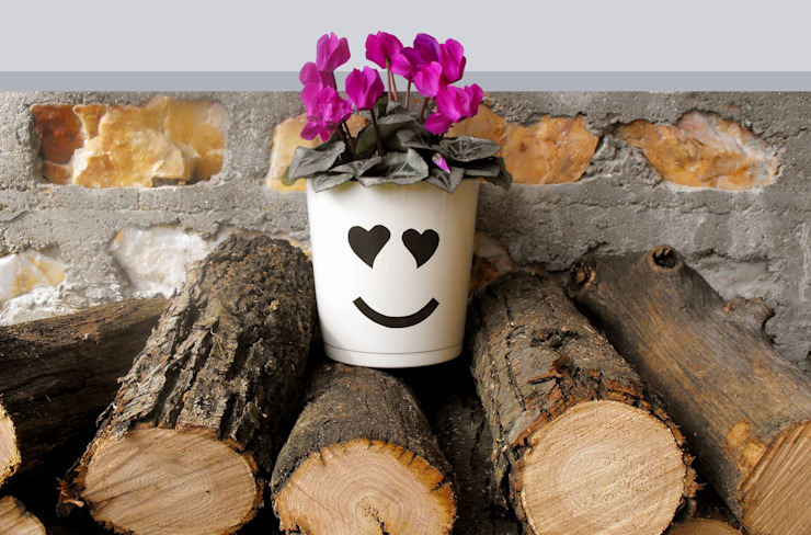 RECOVER® HouseholdPlants & accessories