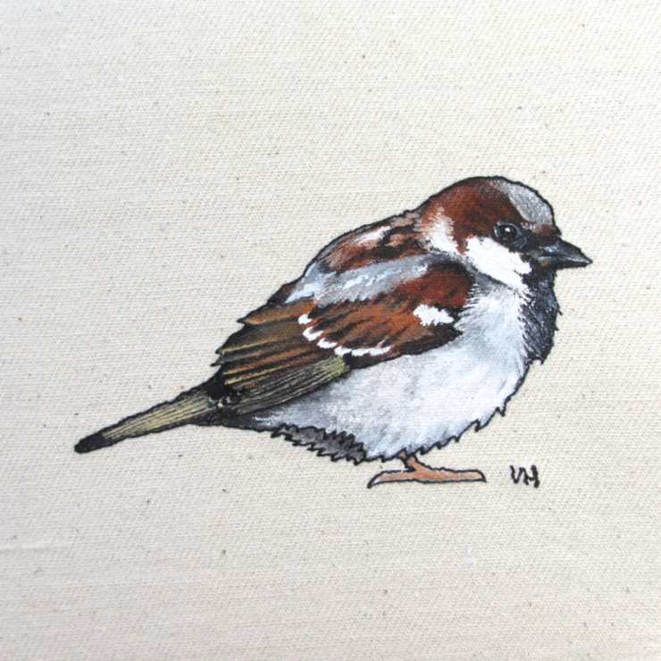 Male Sparrow : country  by Lottie's Cottage, Country