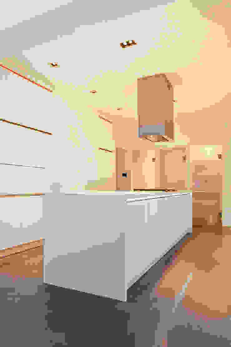 Maldon Road, Exterior Modern kitchen by David Nossiter Architects Modern