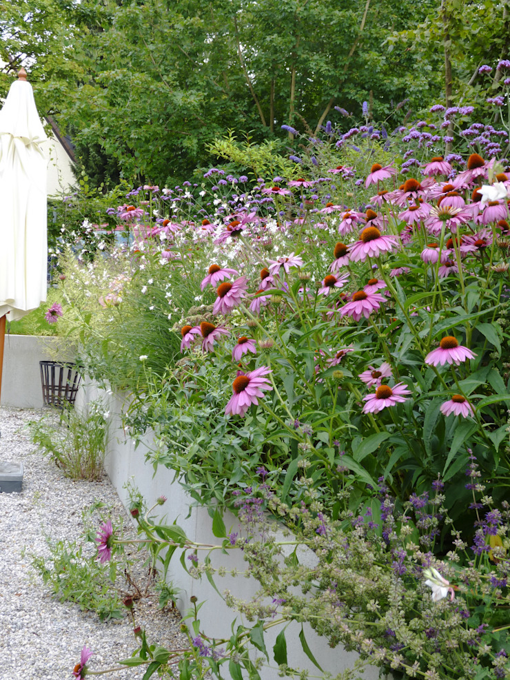 Moderne Gartengestaltung München Gräfelfing Moderner Garten von Blumen & Gärten Modern
