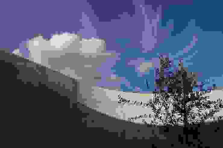 2つの中庭と大きなデッキスペースのある家(渋谷の家) モダンな庭 の 大島功市建築研究所 一級建築士事務所 モダン