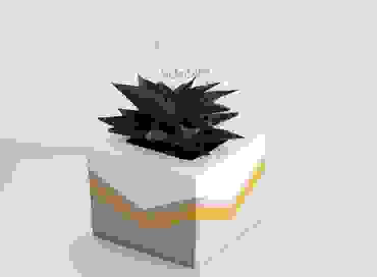 Betonica – Golden El Yapımı Beton Saksı: modern tarz , Modern