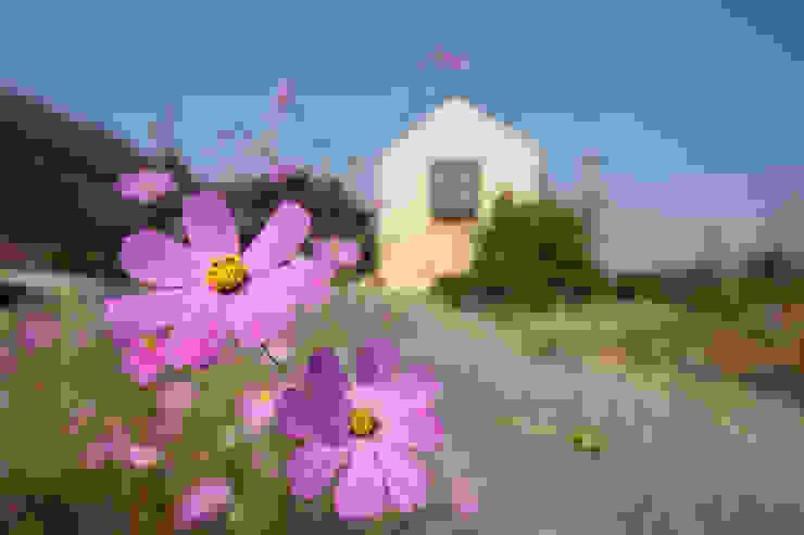 南濃の家 オリジナルな 庭 の 五藤久佳デザインオフィス有限会社 オリジナル