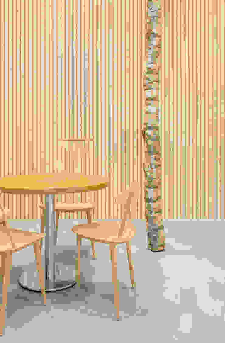 natuurlijke materialen Moderne kantoorgebouwen van CUBE architecten Modern