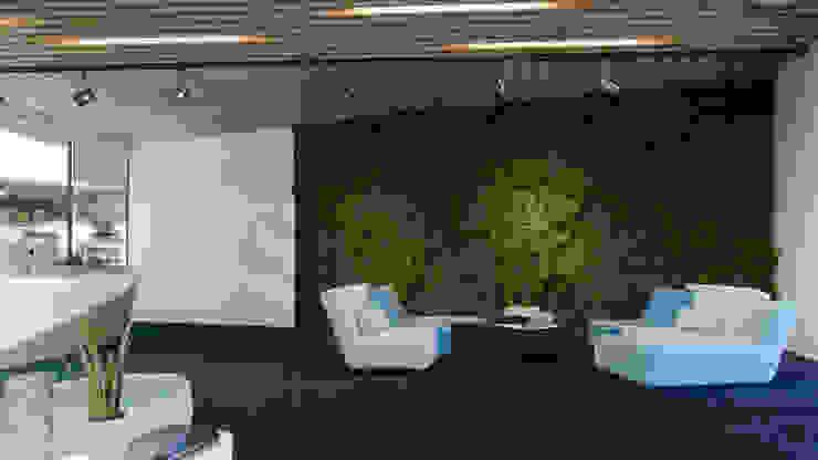Office, Sydney Minimalistische Bürogebäude von ARCHIplus Minimalistisch