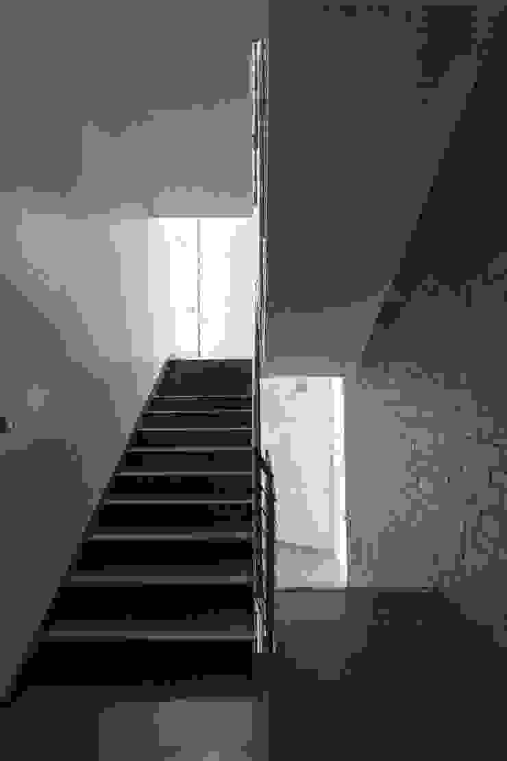 Wnętrze - klatka schodowa od METEOR ARCHITECTS Anna Pszonak Nowoczesny