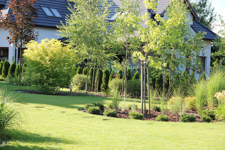 Młode drzewka od Garden Idea - Projektowanie Ogrodów Nowoczesny