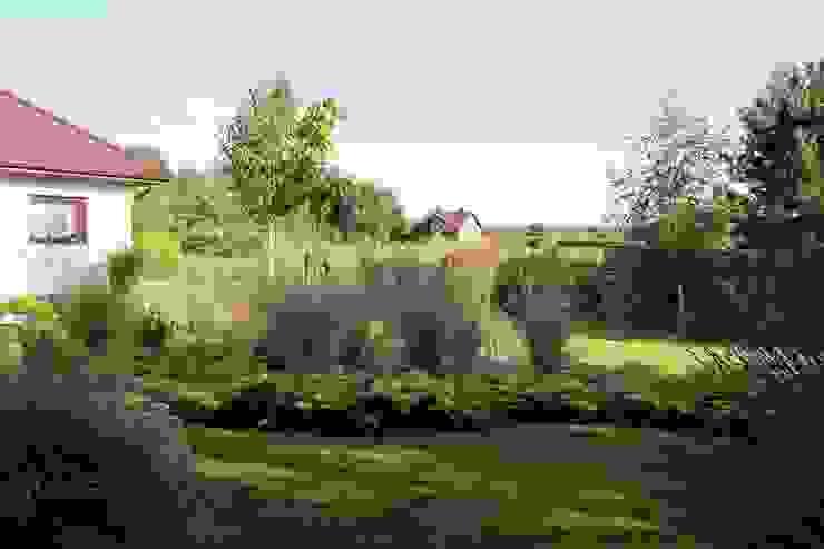 Ogród traw od Garden Idea - Projektowanie Ogrodów Nowoczesny