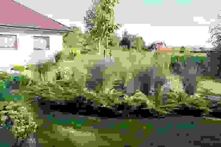 """Zwiewna rabata z delikatnych miskantów chińskich """"Morning Light"""" od Garden Idea - Projektowanie Ogrodów Nowoczesny"""