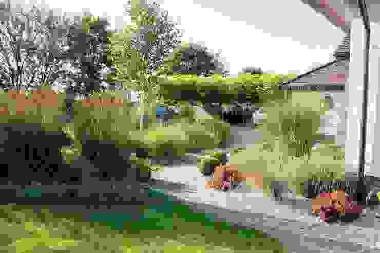 Różne gatunki traw od Garden Idea - Projektowanie Ogrodów Nowoczesny