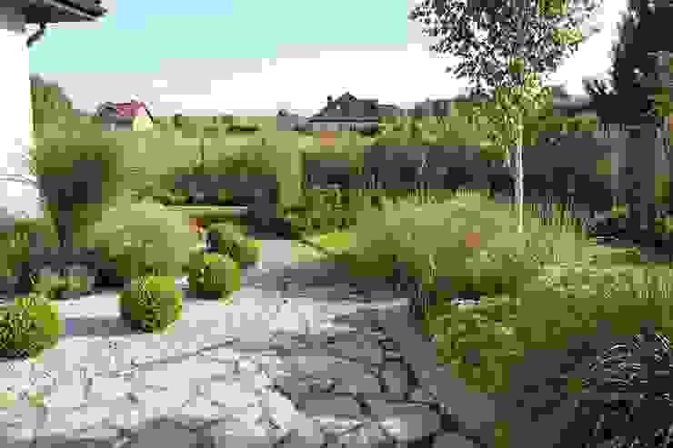 Kuliste bukszpany od Garden Idea - Projektowanie Ogrodów Nowoczesny