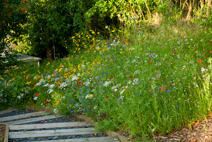Wildflower Seed Meadow with Sleeper steps Country style garden by Katherine Roper Landscape & Garden Design Country