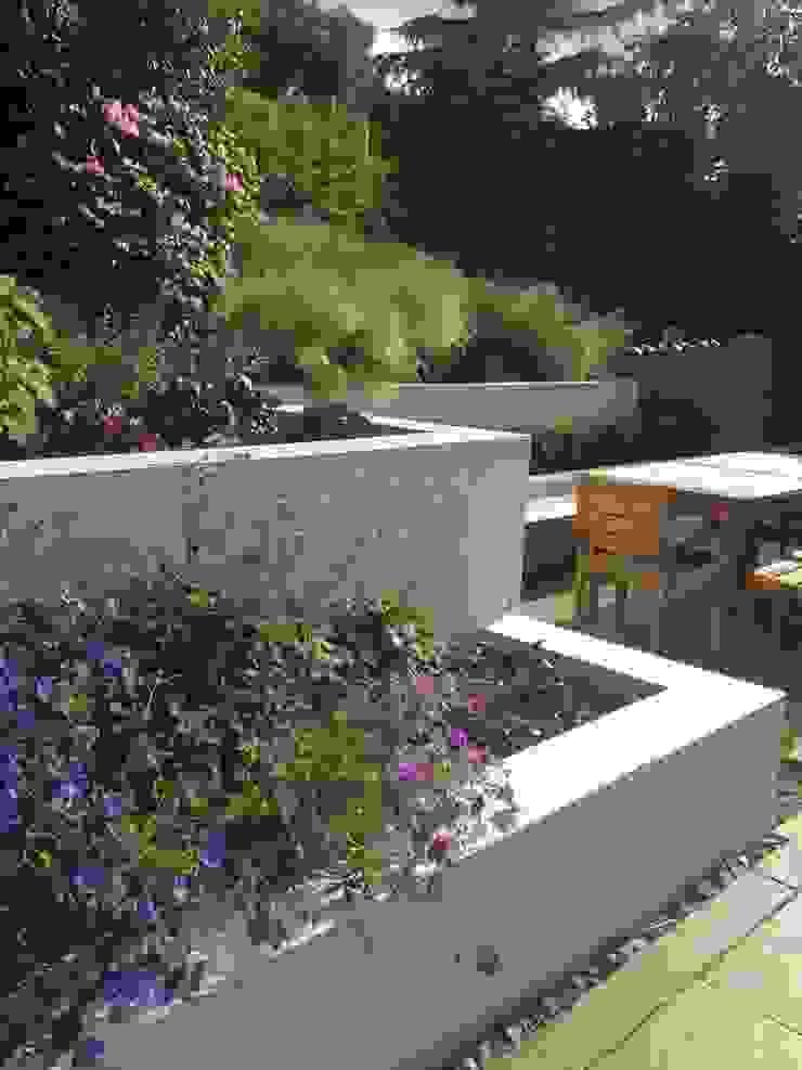 Large Contemporary Garden Modern garden by Katherine Roper Landscape & Garden Design Modern