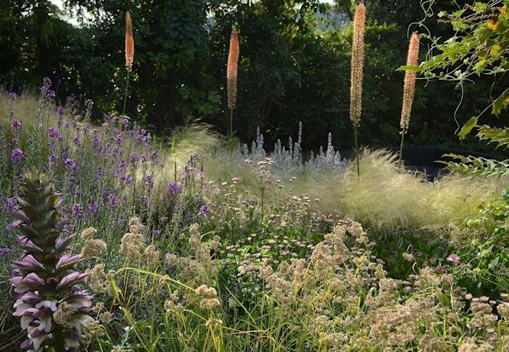 Planting on a bank with Eremurus Country style garden by Katherine Roper Landscape & Garden Design Country