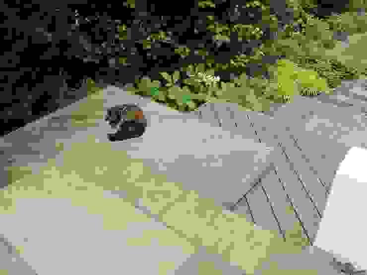 Wood Deck Platform Steps Jardins modernos por Katherine Roper Landscape & Garden Design Moderno