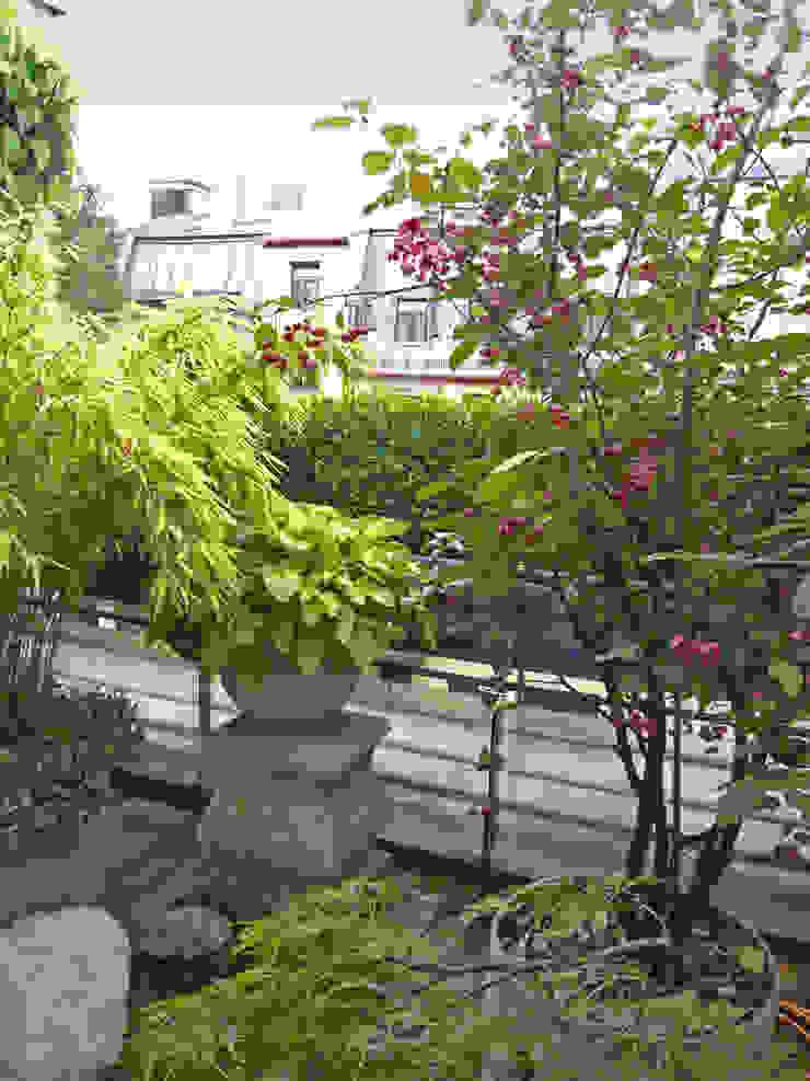 Dachterrassengestaltung München Klassischer Garten von Blumen & Gärten Klassisch