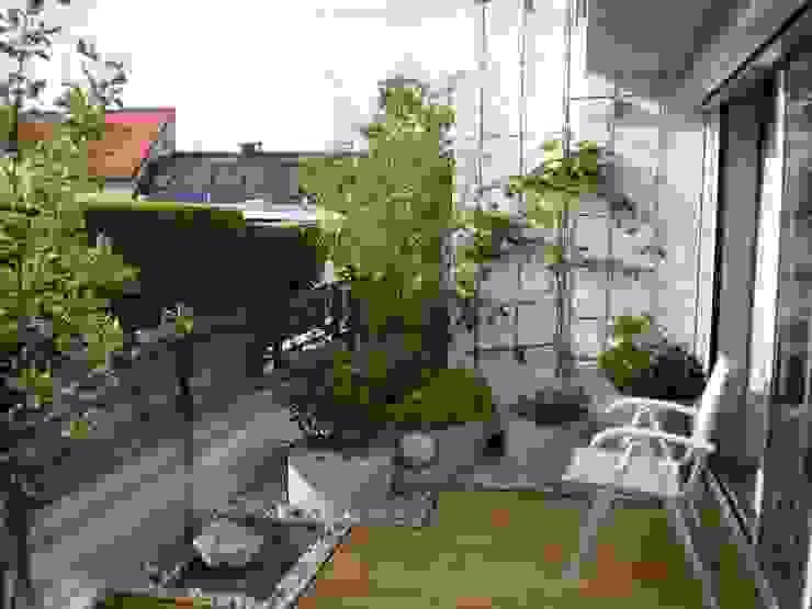 Dachterrassengestaltung München-Glockenbachviertel Klassischer Garten von Blumen & Gärten Klassisch
