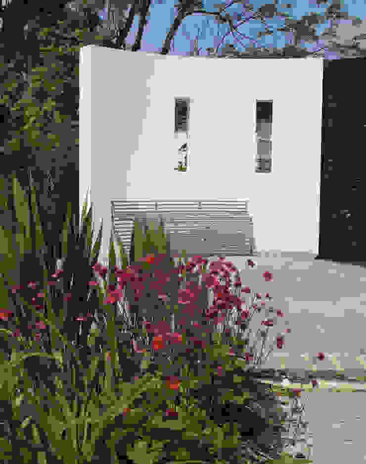 Traditional and Contemporary Mix Cherry Mills Garden Design Giardino moderno