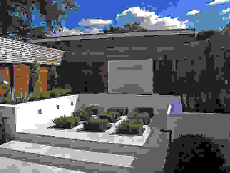 Contemporary Garden in Guildford Cherry Mills Garden Design Giardino moderno