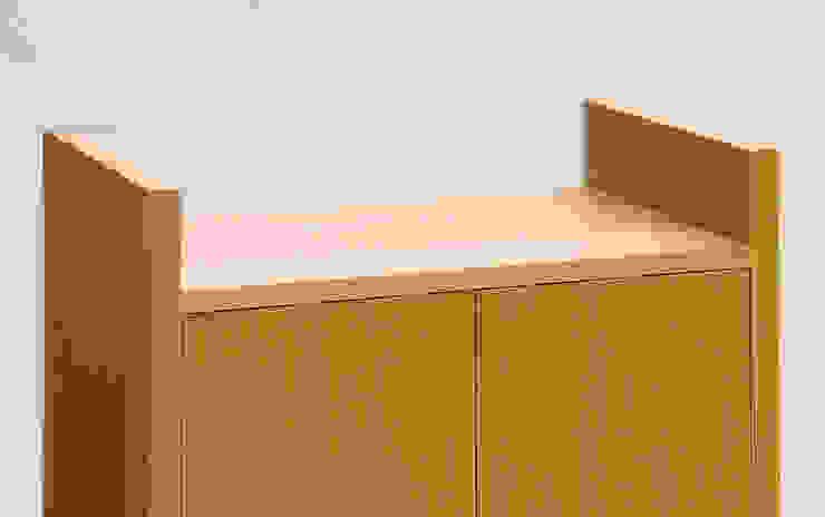 Hi Fi Cabinet - Detail: modern  by Martin Greshoff Furniture, Modern