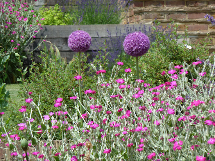 Garden for bees. Country style garden by Cherry Mills Garden Design Country
