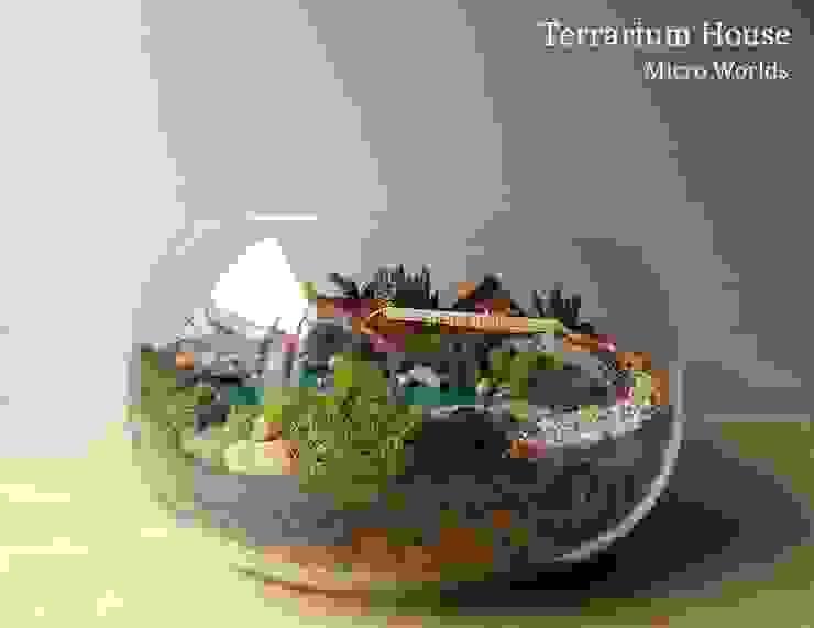 Terrarium House – Terrarium 'Happy Ending': modern tarz , Modern