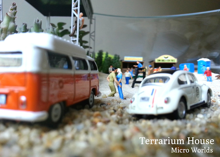 Terrarium House – Terrarium 'Music Festival': modern tarz , Modern