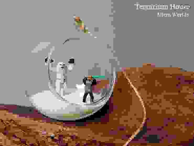 Terrarium House – Hediyelikler: modern tarz , Modern