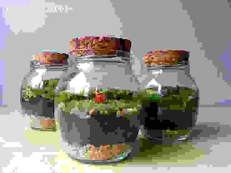 de Terrarium House Moderno