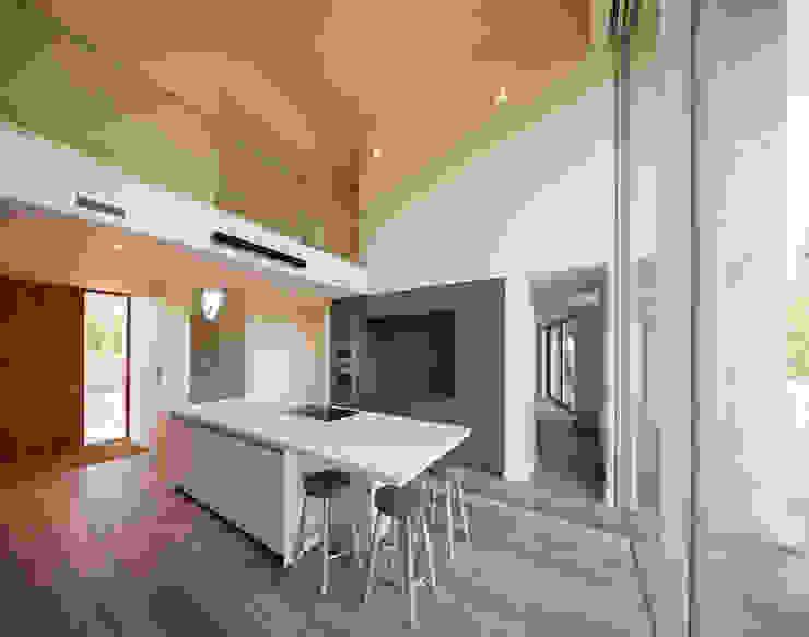 The Laurels Modern kitchen by Adrian James Architects Modern