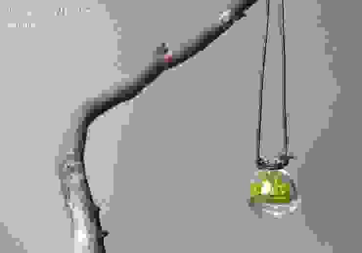 Terrarium House – Bijoux: modern tarz , Modern