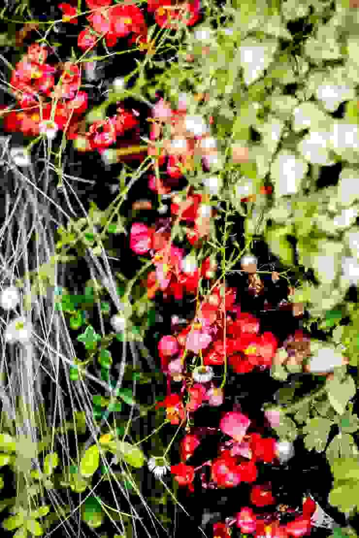 Mediterranean style garden by thesustainableproject Mediterranean