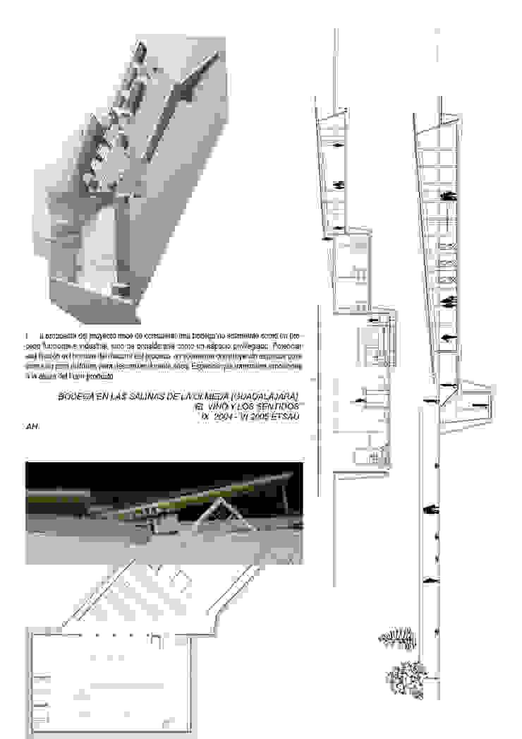 EL VINO Y LOS SENTIDOS_BODEGA de Arte y Vida Arquitectura