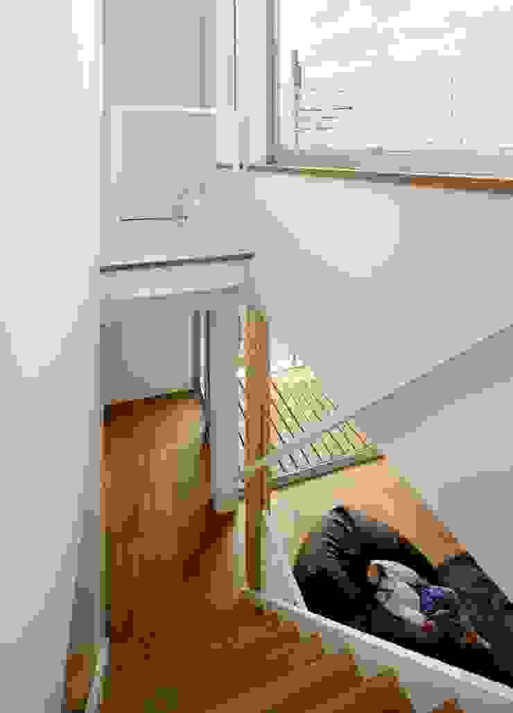 Modern Corridor, Hallway and Staircase by hiroshi Modern