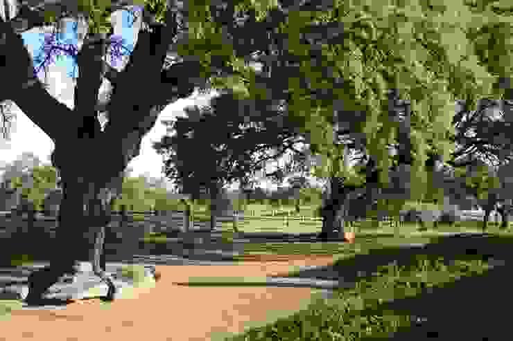 EL ROBLEDO LA BELLA SOMBRA PAISAJISMO Jardines de estilo mediterráneo