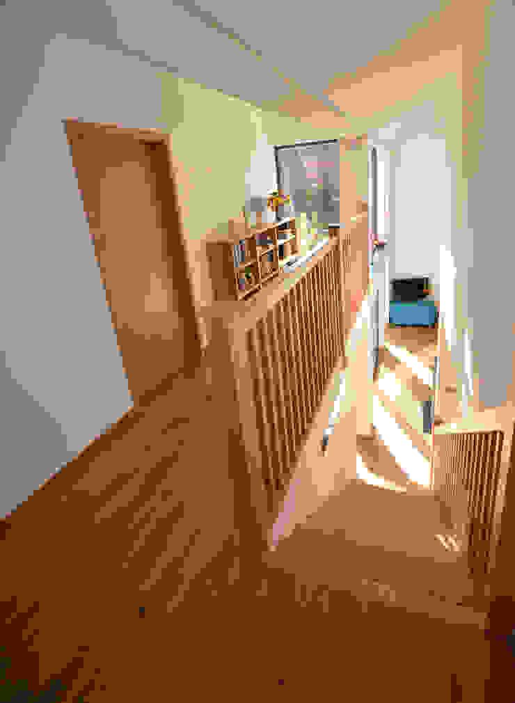 Maryville Passive House Modern corridor, hallway & stairs by Joseph Thurrott Architects Modern